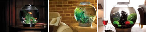 Biorb Fish Tank
