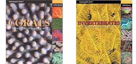 Corals Invertebrates Quick Reference