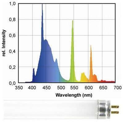 Kelvin Scale Bulb Color